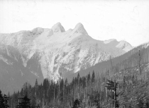logging in Capilano 1920's